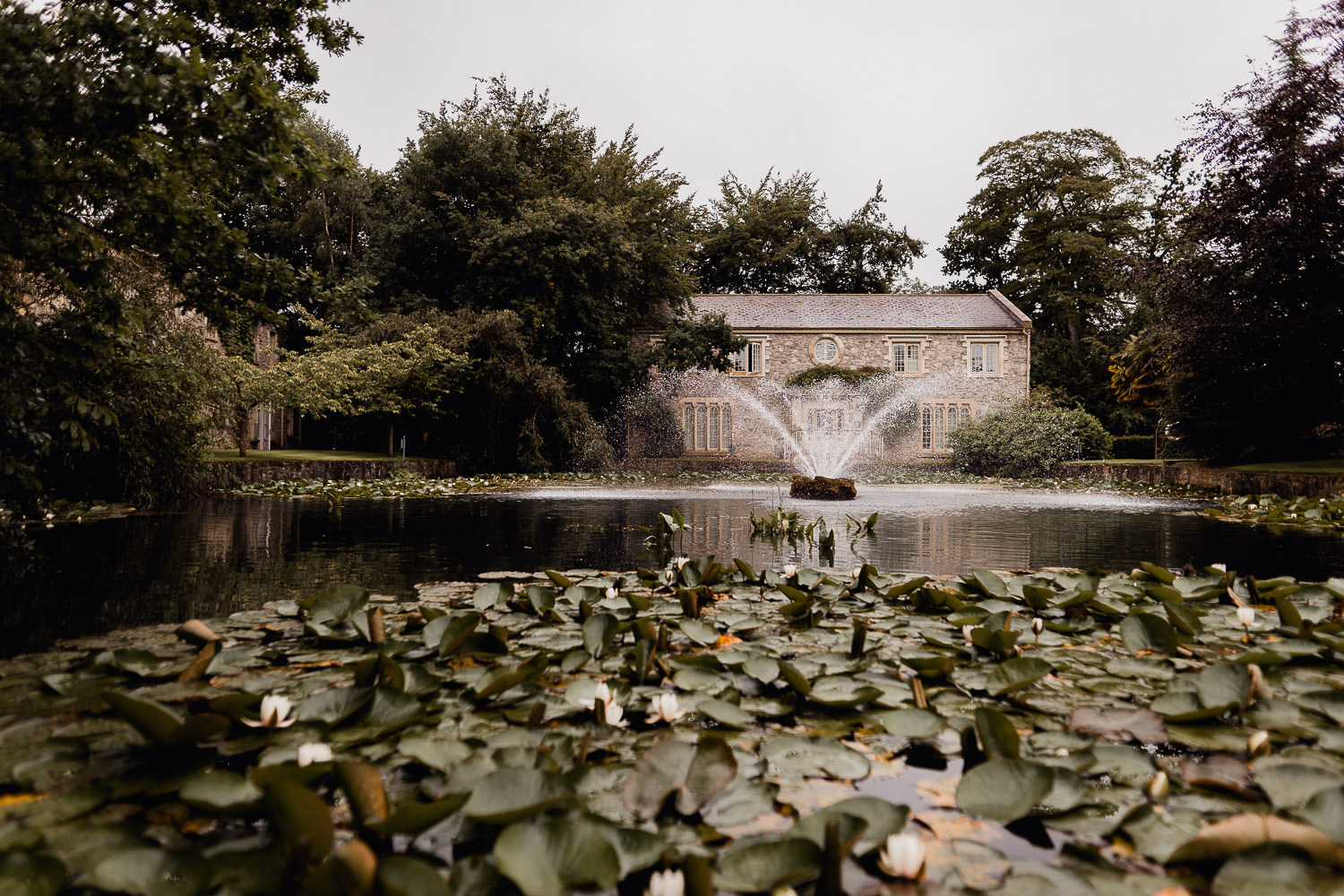 lily pond and waterfall at Cliff at Lyons Kildare